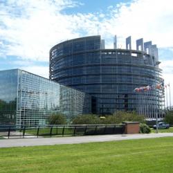 ELECTIONS   Les Européennes, mode d'emploi #1