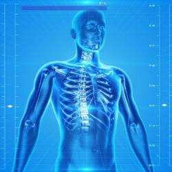 SANTE | Les chiropracteurs ouvrent leur cabinet jusqu'&agrave samedi
