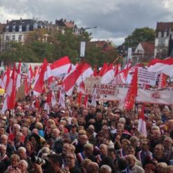 SONDAGE | Dialecte, région Grand Est, collectivité unique : l'Alsace passée aux rayons X