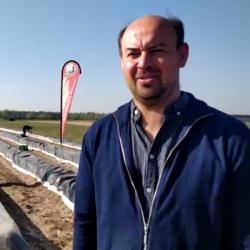 CORONAVIRUS | Les producteurs d'asperges espèrent sauver leur saison