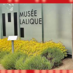 DECONFINEMENT | Réouverture des musées : entre soulagement et inquiétude au musée Lalique