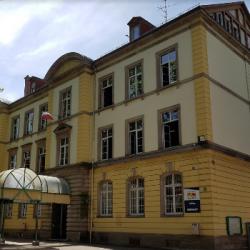 RENTREE | L'actualité des collèges dans le Haut-Rhin avec le Conseil Départemental