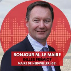 BONJOUR M. LE MAIRE DE HEIDWILLER (68)