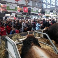 AGRICULTURE   Pas de Salon de l'Agriculture cette année encore, les professionnels s'adaptent